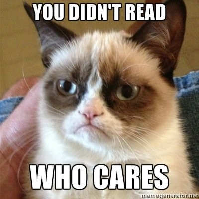 335380-grumpy-cat-memes-feeling-bad-let-the-cranky-cat-face-your-grief
