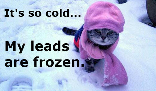 So cold my leads are frozen