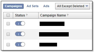 Facebook Ads Status - toggle switch