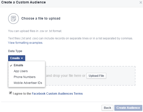 Facebook-Custom-Audience-2