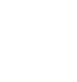 Stevie Award Winner 2019