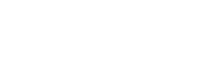 OVER $54 MILLION IN DIGITAL ADS MANAGED ACROSS GOOGLE AND SOCIAL MEDIA PLATFORMS